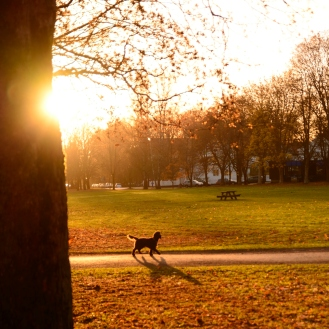 fragner park 2