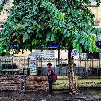 Battambang 4